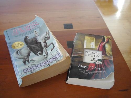 Ruined_books_001_3